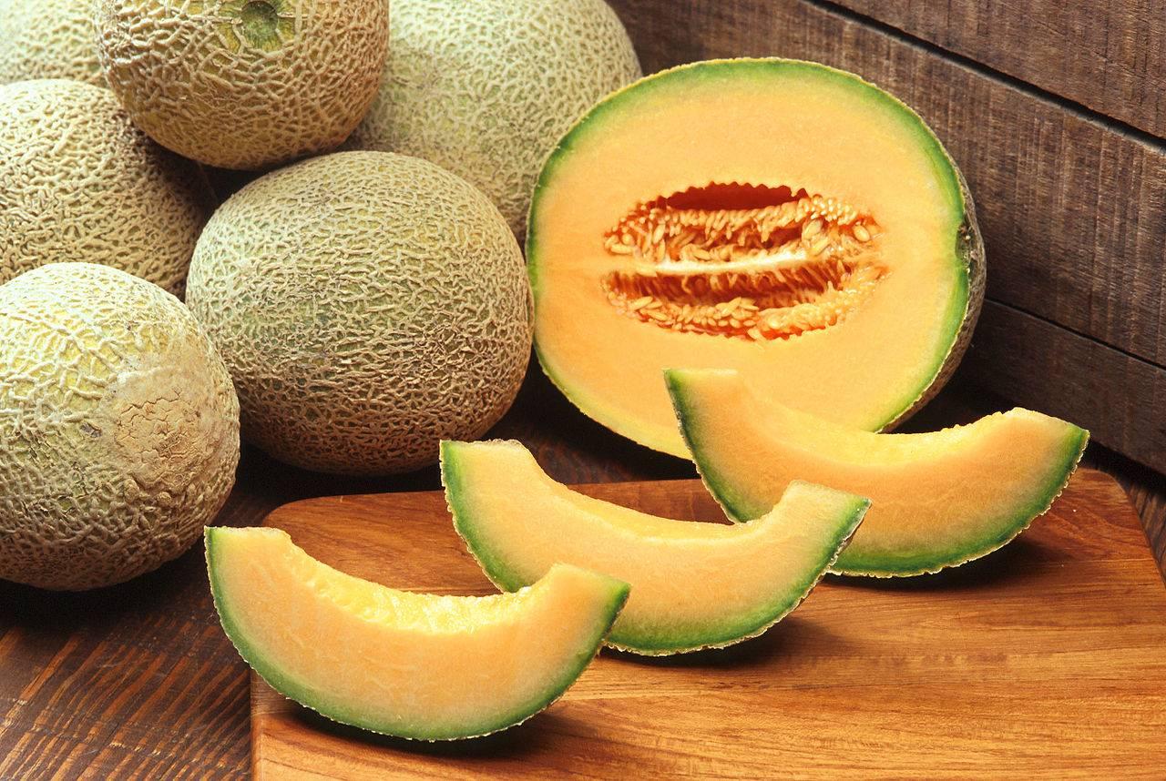 Resultado de imagen para melon semilla