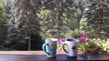 Willa Róż - kawa na tarasie