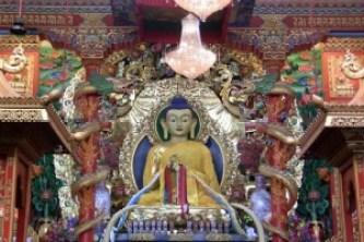 tibetan monastery sarnath for gallery