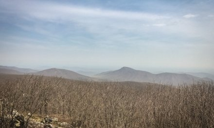 Hike 8 of 52 – Lower Hawksbill Trail in Shenandoah National Park