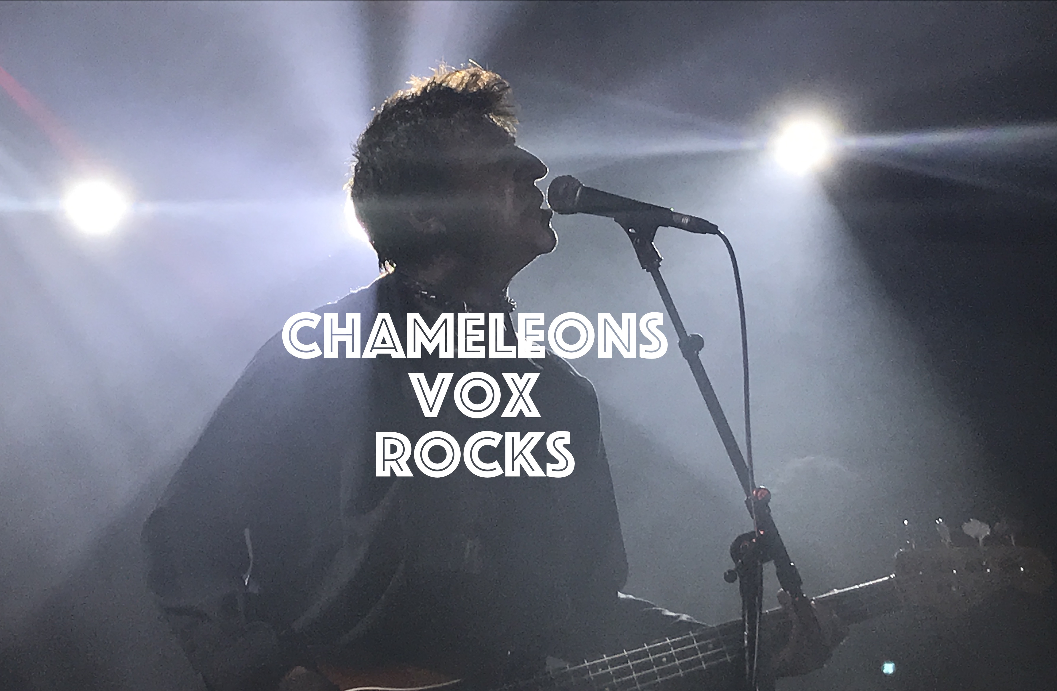 Chameleons Vox Rocks, InnerEdgeMusic.com
