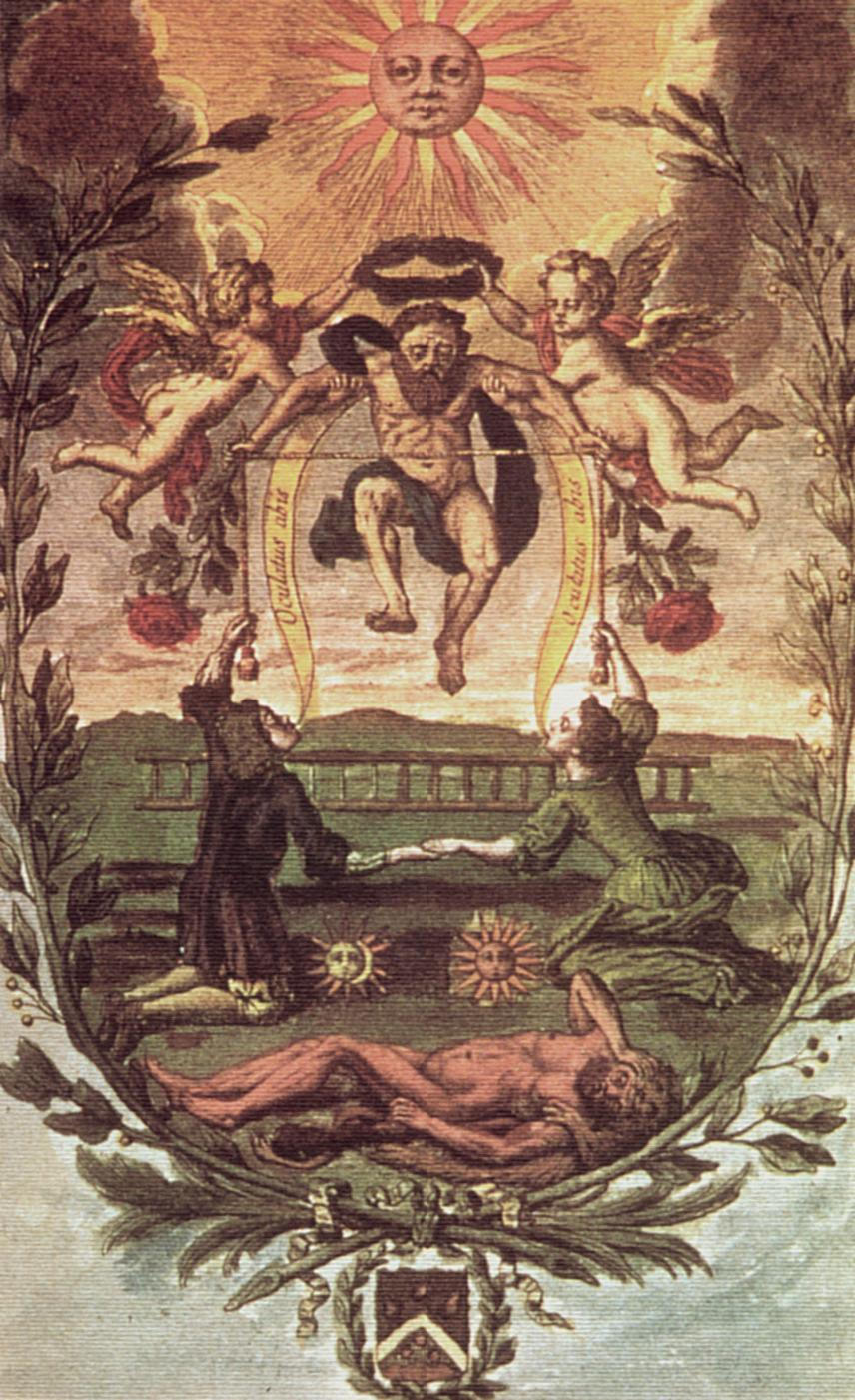 Mutus Liber Images