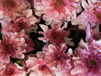 LE Dhani Pink Flowers