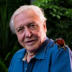 David Attenborough - Planet Earth II - The IPS Documentary List - Inner Picture Stories