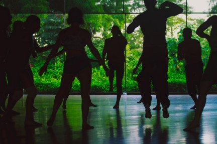 Inner Rhythm workshop, Ecstatic Dance Retreat, Big Island, Hawaii