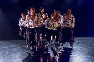 Choreografie Davidson Farias Abbildung Ensemble «Tanz Luzerner Theater»