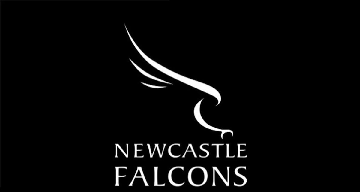 Clean slate for Newcastle Falcons