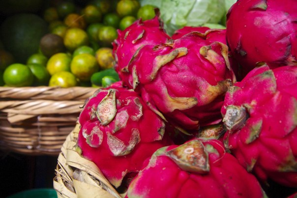 Mercado Monday: Pitaya