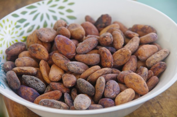 Mercado Monday: The Cacao Bean (Chocolate)