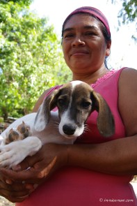 Saving Dogs in San Juan del Sur