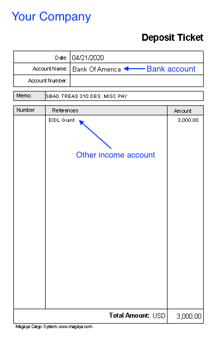 Account EIDL Grant accounting record