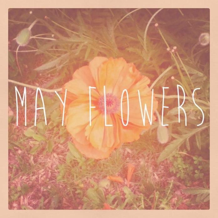 may-flowers_skinny_web