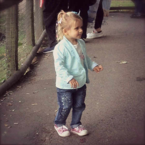 addison_at_the_zoo