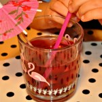 Taste Test // Robinsons Cordial
