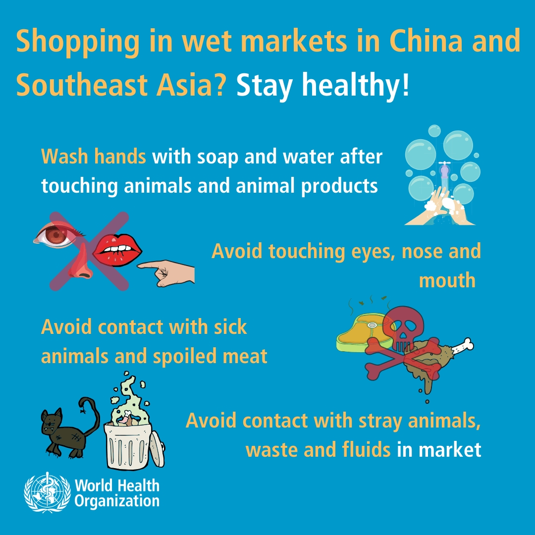 Coronavirus - Shopping in wet markets in China and South east Asia--1