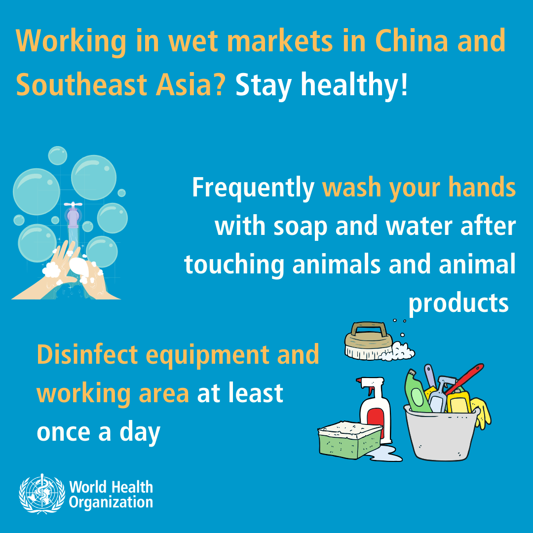 Coronavirus - Shopping in wet markets in China and South east Asia--3