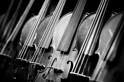 A line of cellos