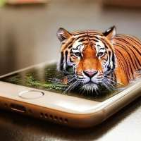 Saving Endangered Species? There's an App for That!