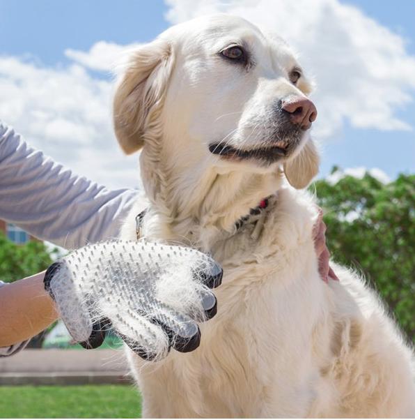 Luva - escova para animais de estimação My Pet Petter