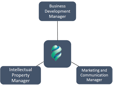 Innovate's-Structure-Organization-2