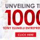 2017 Tony Elumelu Entrepreneurship Programme