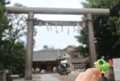 Loki at the Shinto Shrine