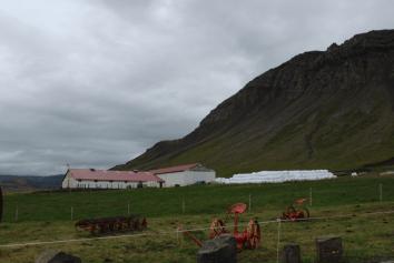 FarmSharkMuseum