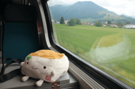 Tofu San Rides the Train