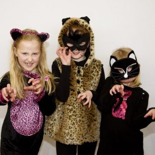 g95a1704itscats