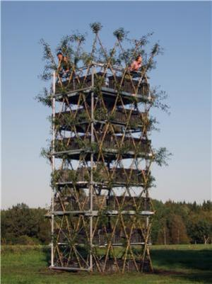 First Tower Made of Living Trees