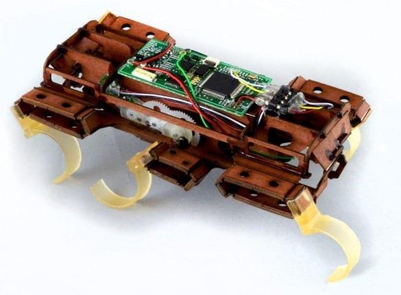 1681168-inline-robo-roach-inline