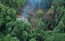 No-win situation for agricultural expansion in the Amazon
