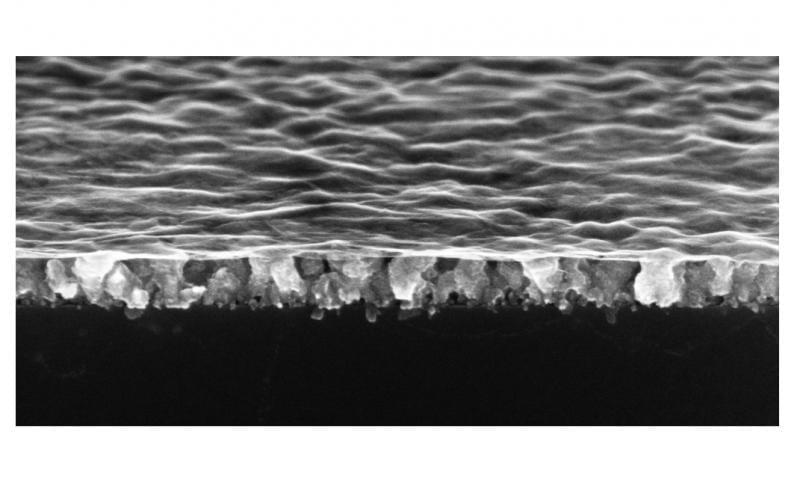 Nanodrapes1