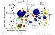 UMD Researchers Address Economic Dangers of'Peak Oil'