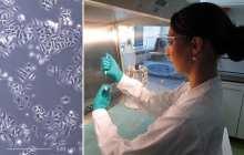 Nano-dwarves turn tumor assassins