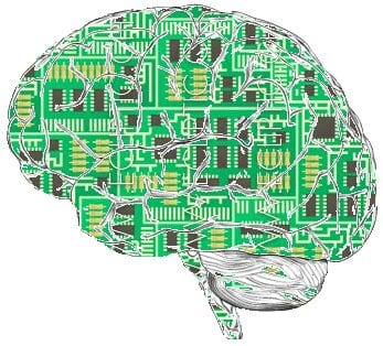 There is currently no consensus on how closely the brain should be simulated. (Photo credit: Wikipedia)