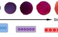 New Revolutionary Sensor Links Pressure to Color Change
