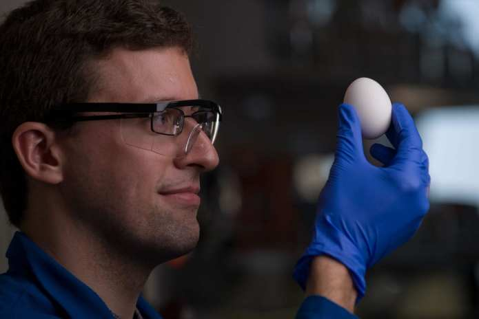 Chemistry major Stephan Kudlacek and professor Greg Weiss have developed a way of unboiling a hen egg.