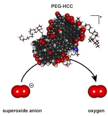 A polyethylene glycol-hydrophilic carbon cluster developed at Rice University has the potential to quench the overexpression of damaging superoxides through the catalytic turnover of reactive oxygen species that can harm biological functions. Illustration by Errol Samuel