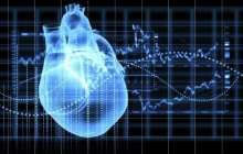 Research finds turbo-charging hormone can regrow the heart