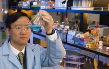 New discovery may be breakthrough for hydrogen cars