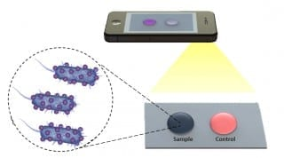 New Biosensing Platform Could Quickly and Accurately Diagnose Disease and Monitor Treatment Remotely