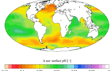 Ocean acidification may cause dramatic changes to phytoplankton