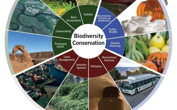 Scientists call for a shake-up in the way we record biodiversity