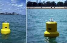 Beach buoys check water quality in real time