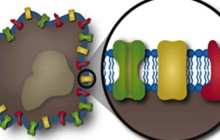 Nanoscale trojan horses treat inflammation by overcoming the body's complex defense mechanisms