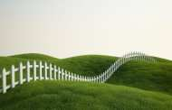Garden grass could become a source of cheap and clean renewable energy