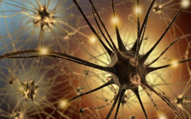 Artificial neurons: You've got a nerve