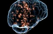Honest behavior can be increased by means of non-invasive brain stimulation