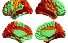 First scientific evidence of a higher state of consciousness has been found